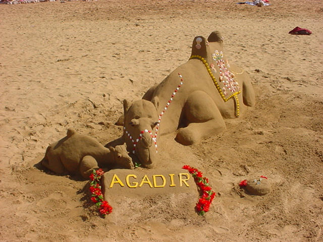 Agadir Strandfoto Kamel im Sand.